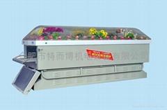 灵车专用喷塑冰棺