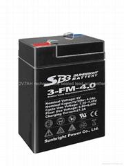 Selling high performance 6V4AH emergency light battery