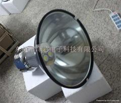 30-100W    LED   Mining lamp