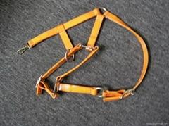 horse bridle -TPU horse bridle