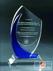 企业优秀个人员工水晶奖牌