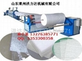 EPE珍珠棉發泡機械 1