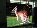 PH6 Indoor LED advertising Display
