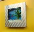 Sell wall aquarium and fish tank SQS