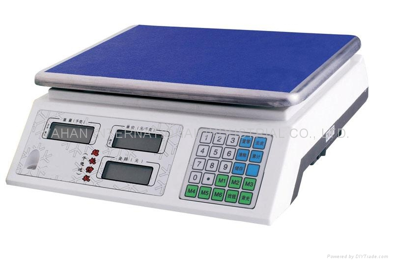Electronic Price Computing Scale 1