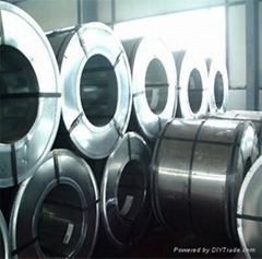 hot dipped galvanized steel coils/ Hot rolled coils/GI/hot rolled strips