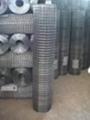 供应电焊网片 5