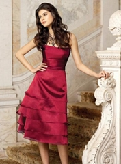 Evening Dress/Prom Dress (PD-238)