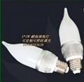 批发NTDX-E27-7W调光球泡灯 4