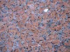 Polished G562 maple red granite tiles dark color