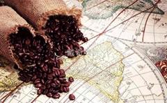 大量供应咖啡原料