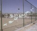 体育场围栏 2
