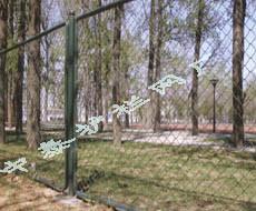 体育场围栏 4