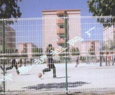 体育场围栏 5