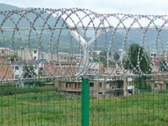 監獄防護網