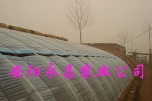 新型空心實心溫室大棚骨架機 1