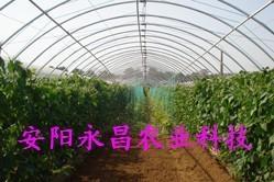 供應新型多功能蔬菜大棚支架機 1