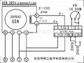 Automatic Voltage Regulator SX440 3