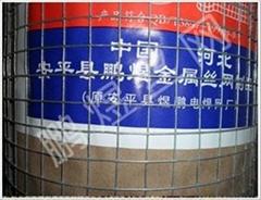大丝热镀锌电焊网