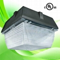 Canopy lights LED for 5 years warranty with UL cUL driver