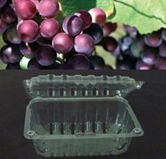grape box fruit clamshell