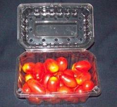 cherry tomato box fruit punnet