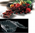 vegetable container fruit box