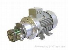供应WOERNER温纳GFM系列齿轮泵