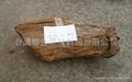 香黄檀_5000kg产地柬埔寨