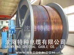 不鏽鋼護套礦物絕緣電纜