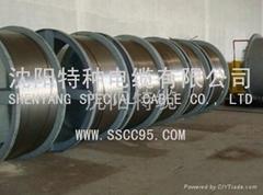 不鏽鋼護套輸油管線電纜