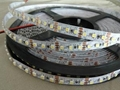 DC12&24V waterproof flexible led strip led decoration lamp