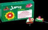 Lotus Fireworks (FT-5016)