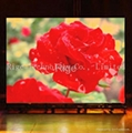 P6  LED Display Screen