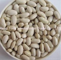 White Kidney Beans(BAI SHA KE)