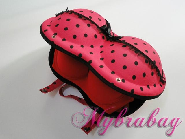 pretty bra bag for ladies 5