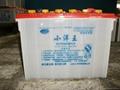 供應小洋王動力強鉛酸蓄電池 2