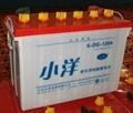 小洋牌動力電池