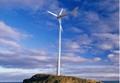 Wind turbine generator 5kw,10kw,15kw,20kw,30kw,50kw