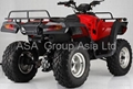 ATV (300D,2WD/4WD,Automatic CVT,Water Cooled) EEC Quad