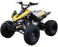 Quad / ATV 110J