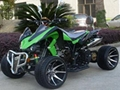 Quad (ATV 250M,water cooled,2passengers seat) EEC
