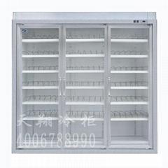 冰櫃 深圳冷櫃