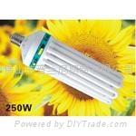 植物生長燈8U250W
