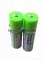 1.2V 1450mAh USB Rechargeable AA Batteries(Green 3