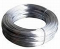 titanium wire 1