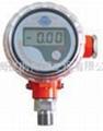 斯盧森內電式數顯壓力表S401