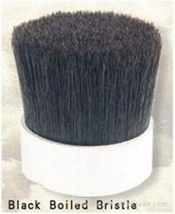 Black Boiled Bristle