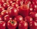番茄紅素提取物 1