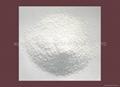DCP Feed Grade-Powder